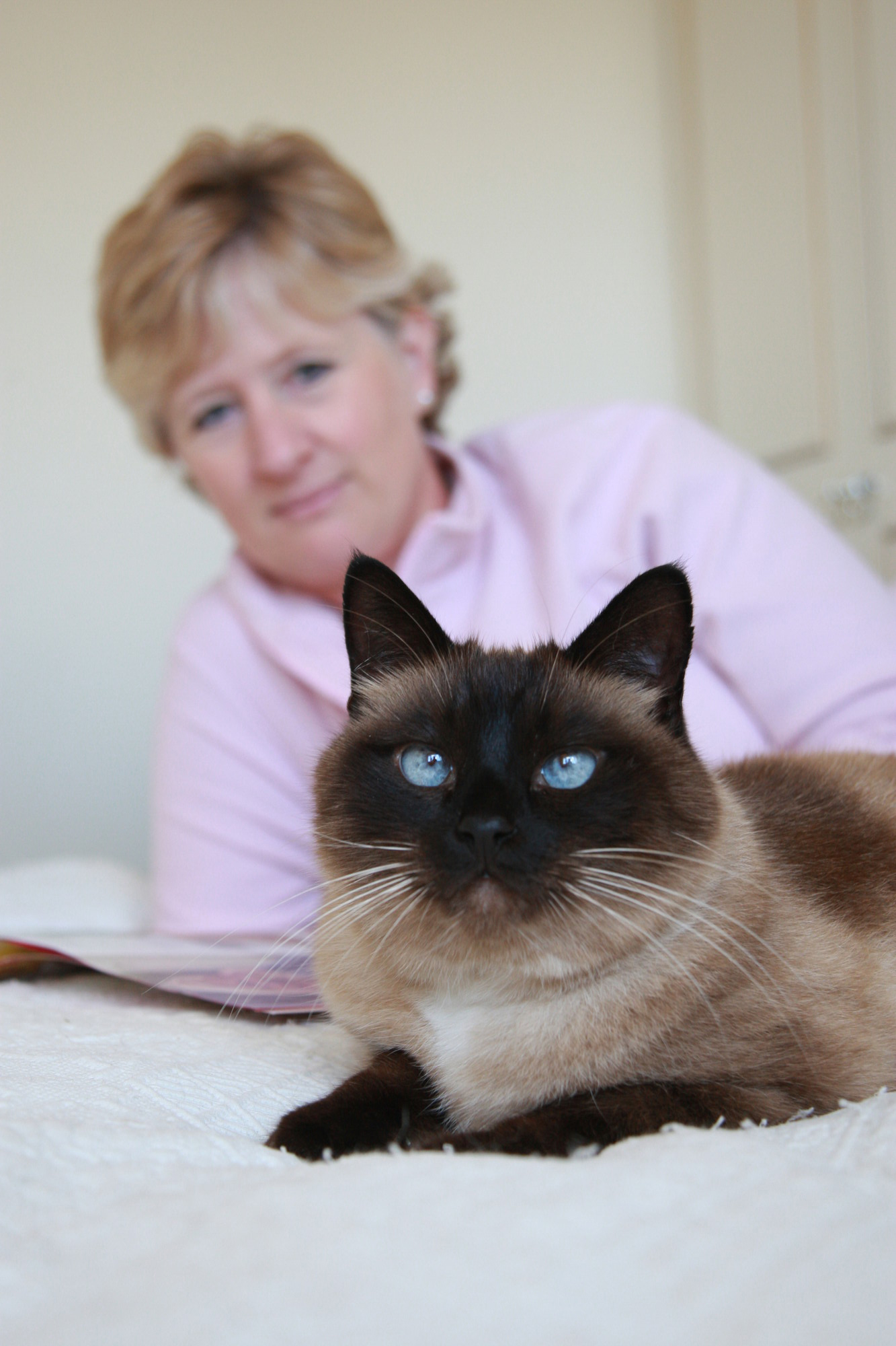 Time to say goodbye to your cat | Advice on cat euthanasia | Blue Cross
