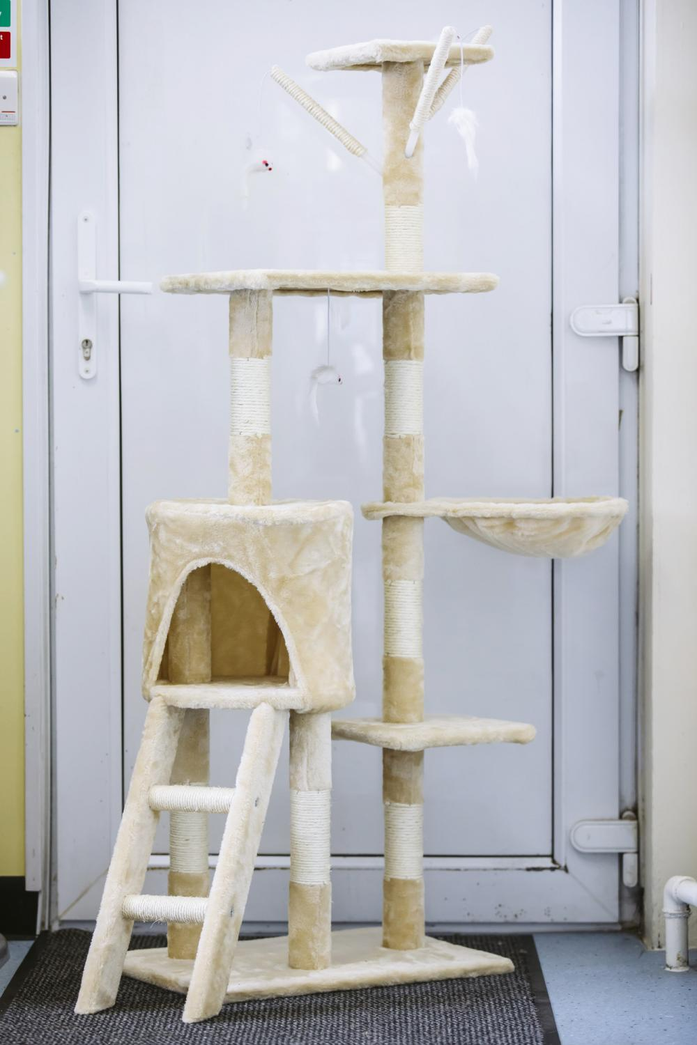 a cat scratch tree with several posts and levels for cats to sit on