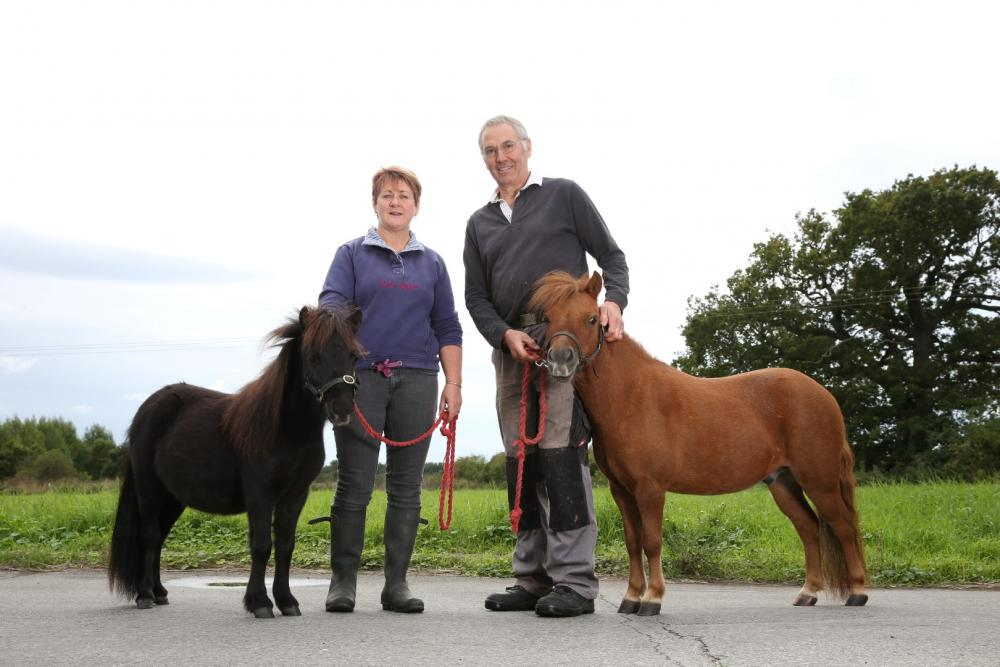 Gary with pony companion Zebby and owners Louise and Richard