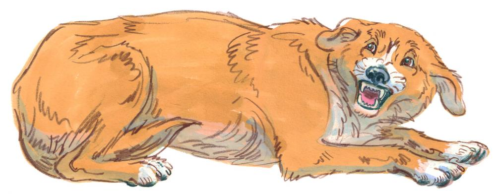 Drawing of a dog crouching down and afraid