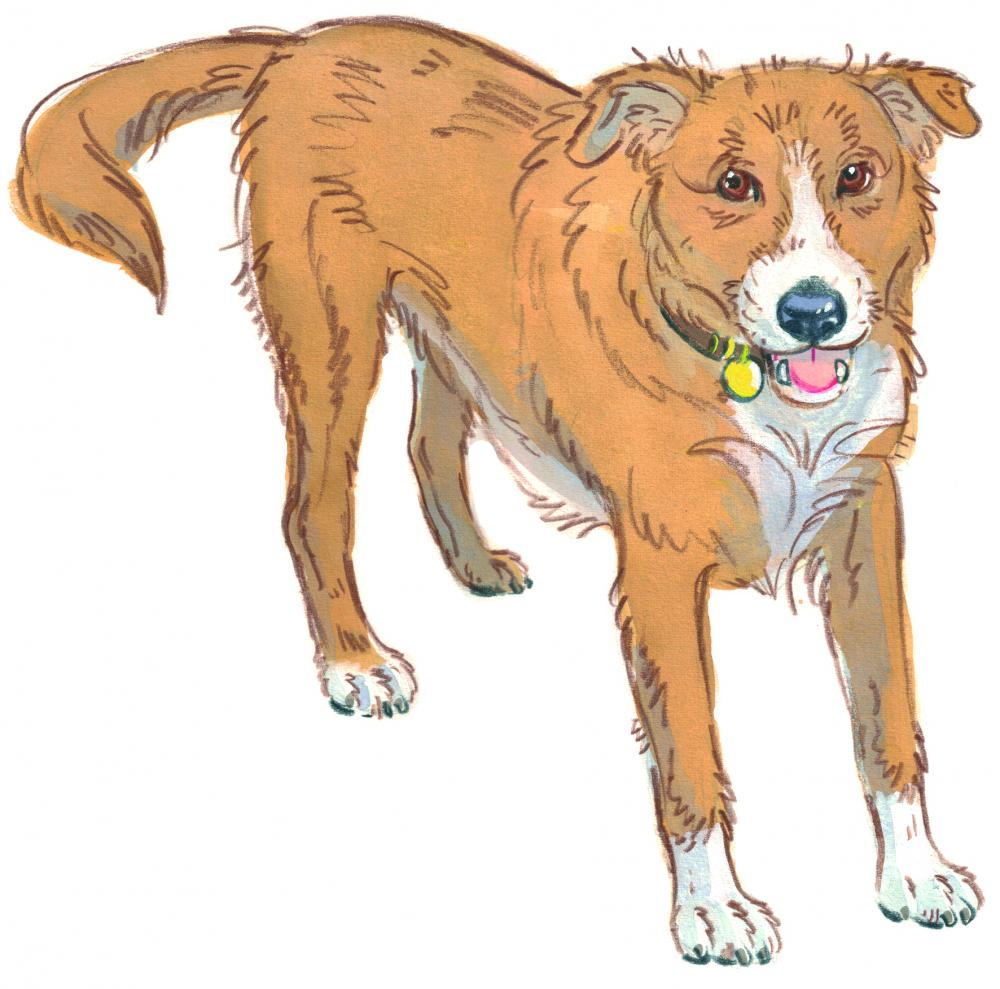 Drawing of a dog with a relaxed body and tongue showing he is happy