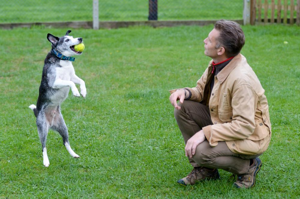 Dog Buster and Chris Packham play ball