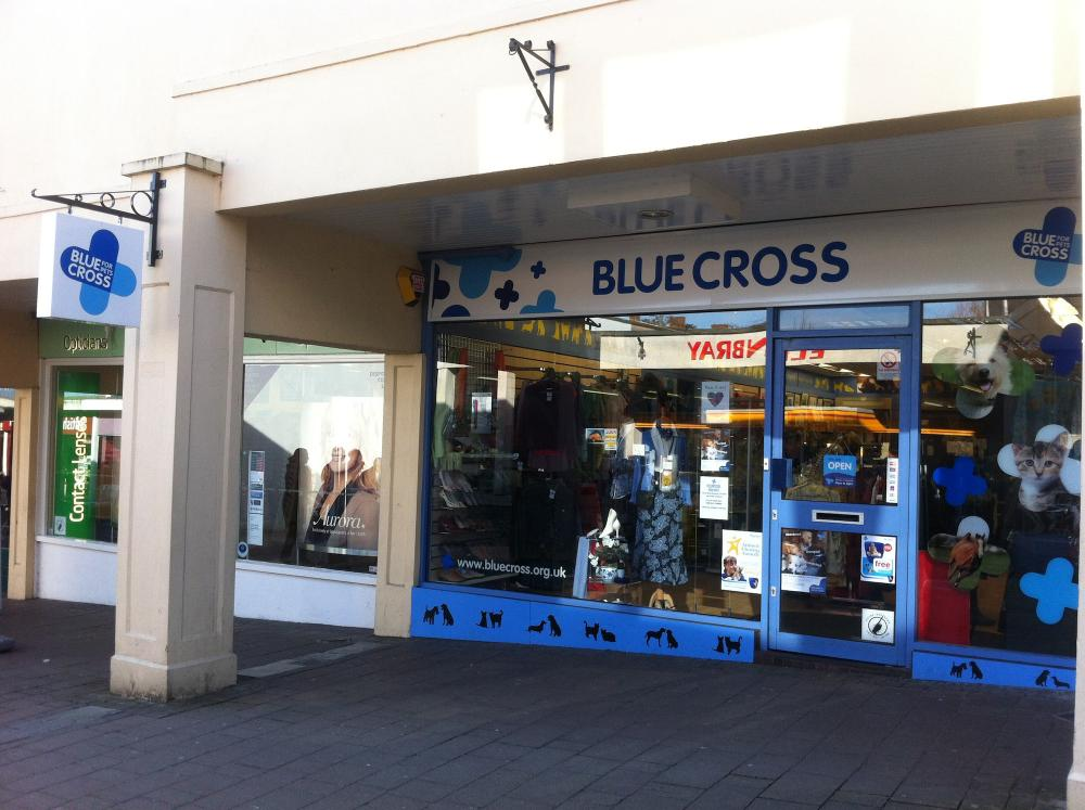 Blue Cross Frome Charity Shop