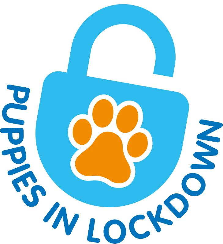Puppies in Lockdown logo