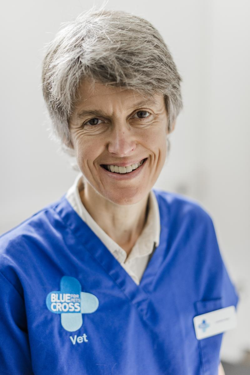 Caroline Reay - Head of Veterinary Services at Blue Cross wearing Blue Cross uniform