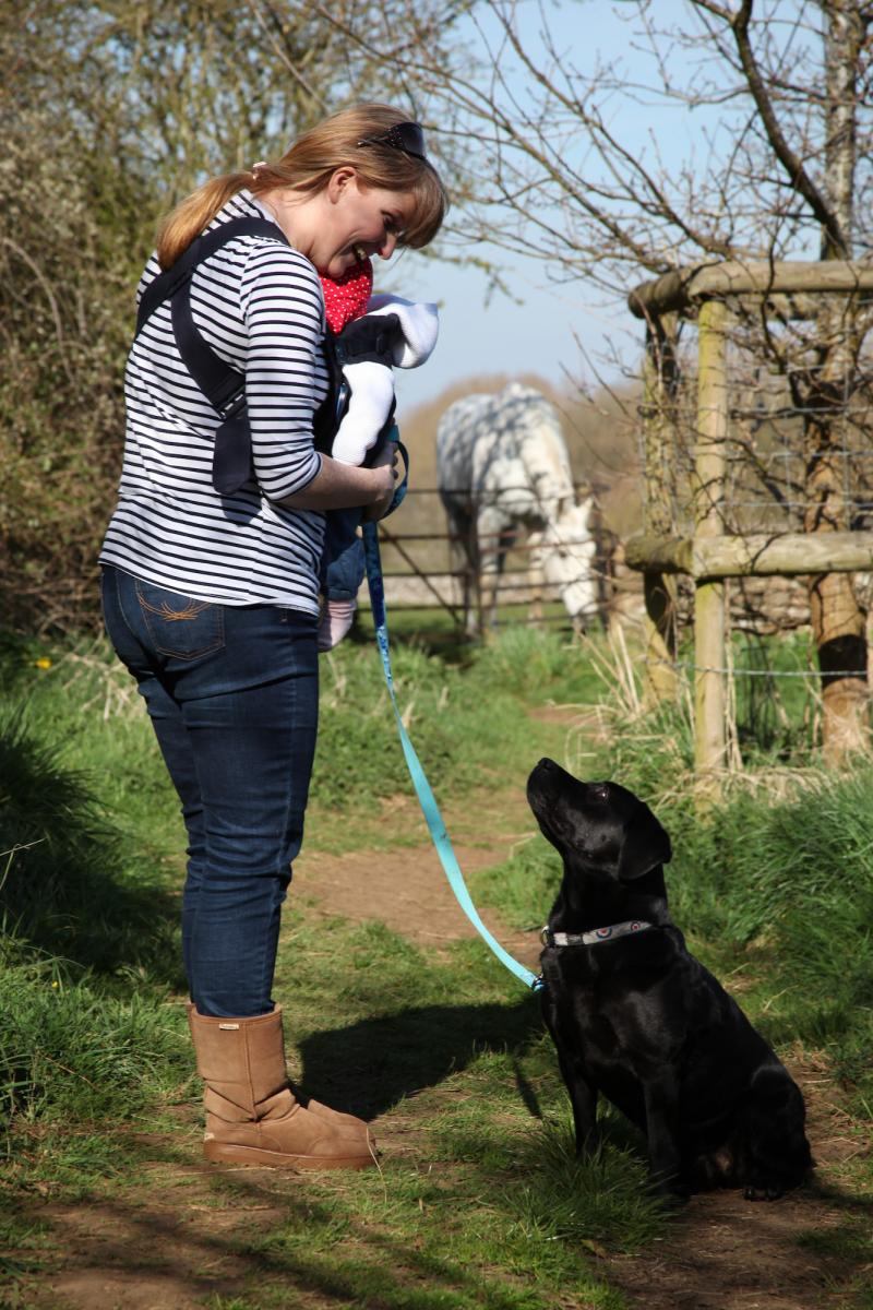 A dog owner keeps her dog calm whilst near a horse
